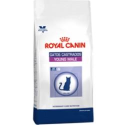ROYAL CANIN GATOS CASTRADOS YOUNG MALE 1,5 Kilos