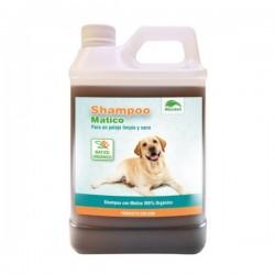 Shampoo de Matico Organico All Green 1 Litro